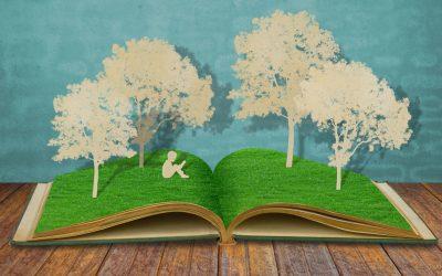 Környezetbarát Victoria papíráru széles választéka